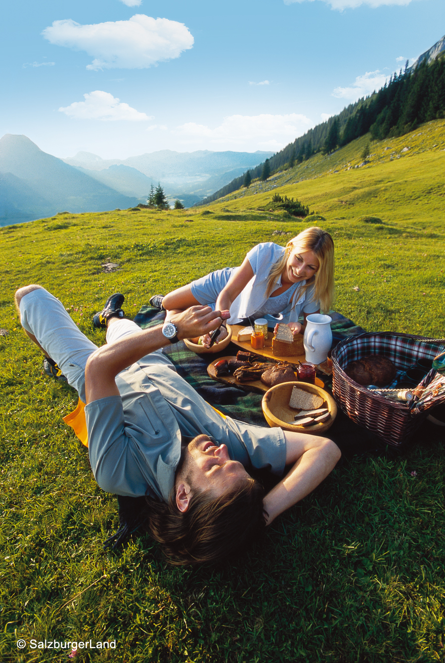 picknick auf der alm. Black Bedroom Furniture Sets. Home Design Ideas