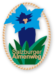 almenweg hiking pin bronze