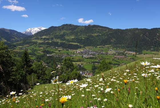 hiking holidays salzburger sonnenterrasse