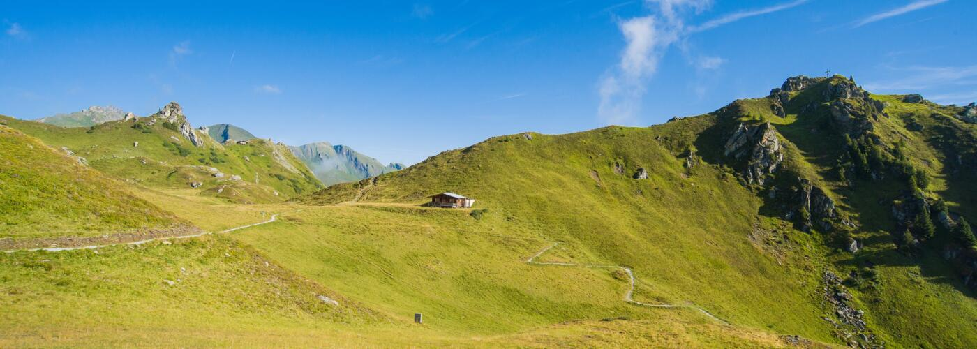 alpine pasture in bad gastein | © raffalt